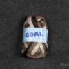 goal - 00